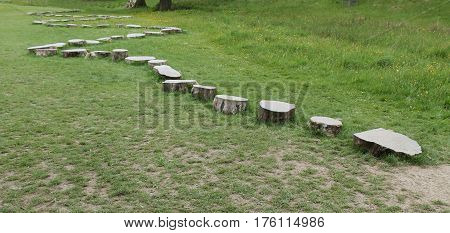 A Row of Wooden Stepping Stones Across a Grass Field.