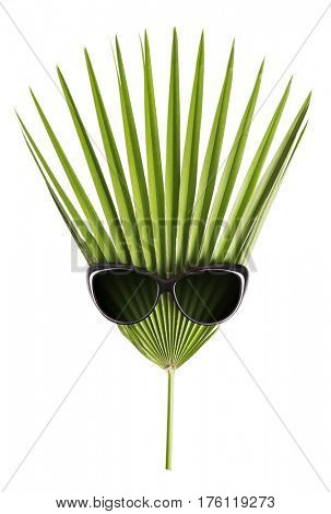 Sunglasses and palm leaf. Isolated on white background.