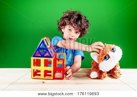 The curly-headed smiling kid irons a cat and persuades him to come into the house through open doors. On a green background.