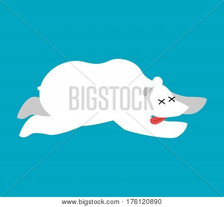 Dead Polar Bear.arctic And Antarctic Wild Beast Dead. Corpse North Predator