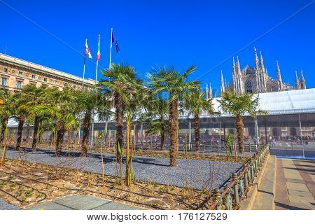 Famous Milan Dome Cathedral, the Duomo in a blue sky day. Tourists and new palm trees planted in front square Piazza Duomo of Milano in Italy.