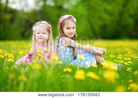 Adorable Little Girls Wearing Wreaths In Blooming Dandelion Meadow On Beautiful Spring Day