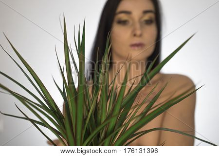 Beautiful Girl. A Girl With A Dracaena Flower