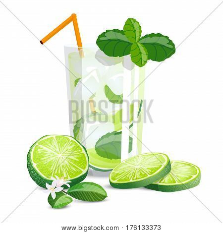 Mojito with mint high detailed color citrus. Vector illustration with sliced limes, mint and cocktail in glass