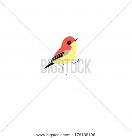 Graphic bright colored vector bird on a white background