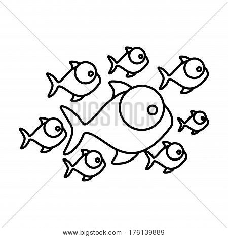 silhouette set collection fish aquatic animal vector illustration