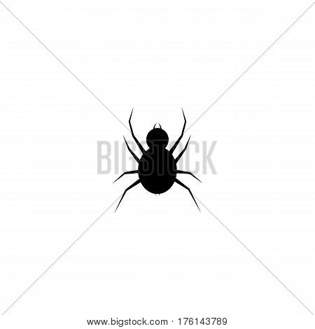 Spider logo template. Spider icon. Flat spider