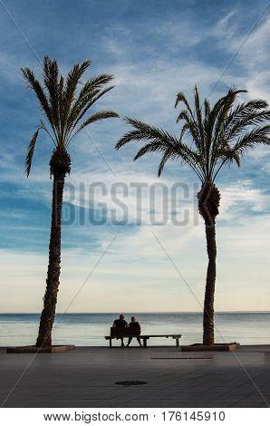 Senior couple resting on the coast of sea
