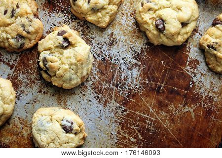 Home made chocolate chip cookies on a tarnished baking sheet with open space for copy