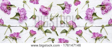 Pink peonies on white grunge wooden background