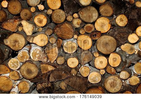 Logs stacked up in to a woodpile