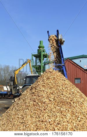 wood chips spilling a mound of belt conveyor sawmill