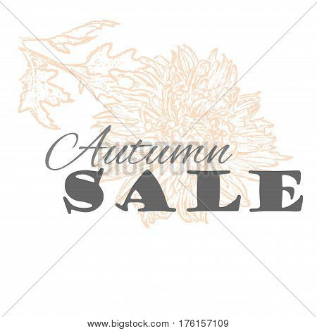Vector Autumn sale template with chrysanthemum flower in pastel colors isolated on a white background. Vintage design for label, greeting card, invitation, gift decoration, sale design, scrapbooking