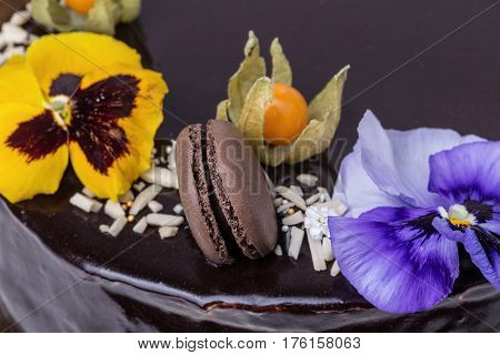 Close-up of chocolate marshmallow cake and Physalis