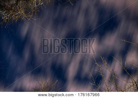 Night Starry Sky With Clouds And Branches Of Trees