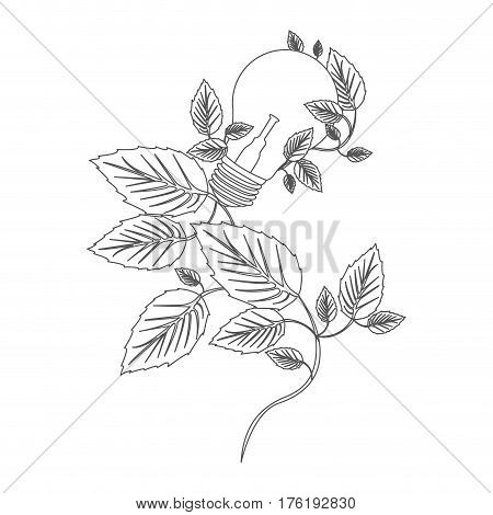 grayscale contour with light bulbs and creeper plant vector illustration