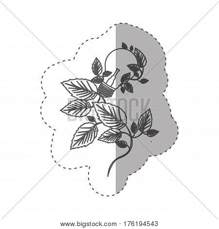 sticker with grayscale contour with light bulbs and creeper plant vector illustration