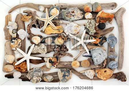 Natural abstract design of driftwood, seashells, seaweed and rocks forming a background on white wood.