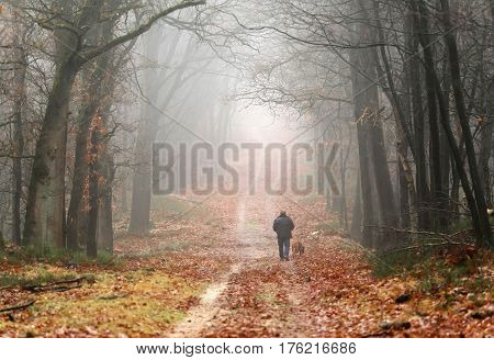 Man with dog walking on lane in misty autumn forest.