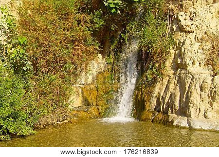 David's Waterfall. En Gedi Nature Reserve, Israel