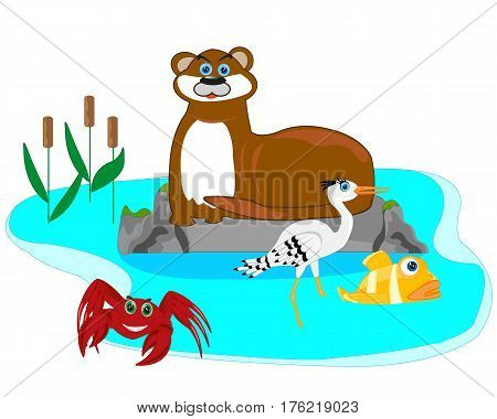 Animal otter and stork in lake on white background is insulated