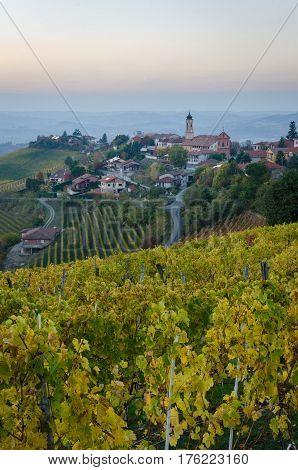 Treiso Le Langhe in autumn colors and landscape