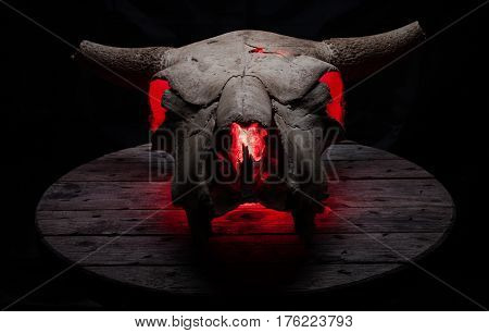 Cow/bull skull on a old grey wooden table, with inner red glow.