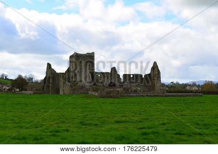 Hore Abbey ruins found near the Rock of Cashel.