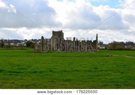 Stone ruins of Hoare Abbey in Ireland.