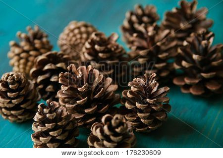Pine cones. Pine cones texture. Pine cones background. Pine cone. Abstract background and texture for designers. Closeup view of brown pine cones for texture and background.