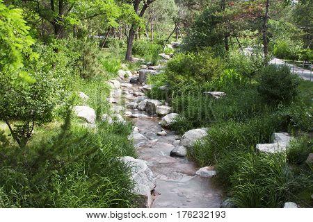 small rocky stream wilderness woods rocks ecosystem
