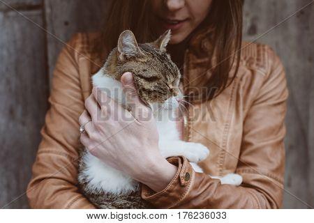 cat lying in woman hands