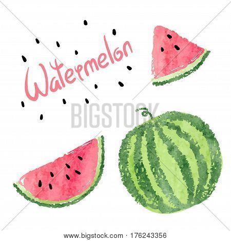 Watermelon set. Vector summer illustration of watermelon slices.