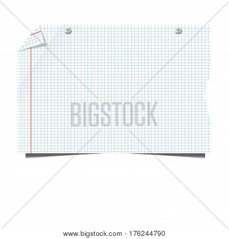 Blank paper sheet of squared or lined school copybook on pins for memo note. Vector isolated template icon