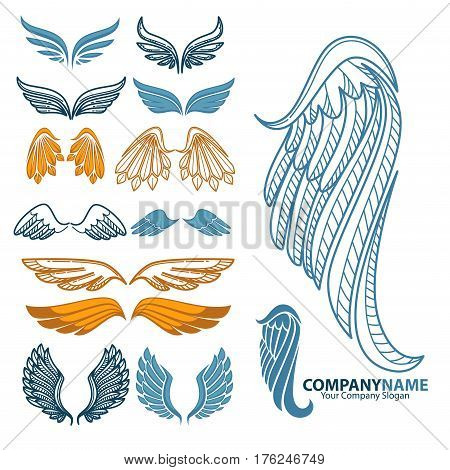 Wings icons set. Logo, tattoo or decoration ornate template symbols of bird feather or golden angel spread wing. Vector isolated set