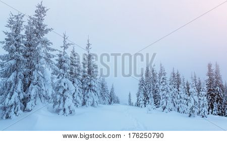 Mysterious Winter Landscape Majestic Mountains In . Magica