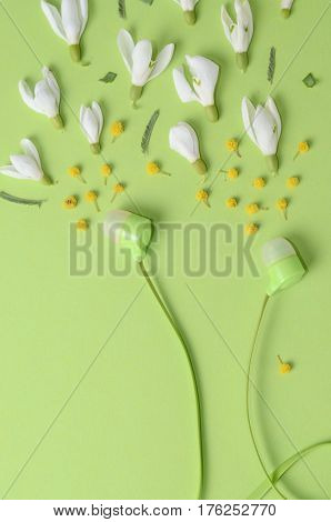 Spring flowers, snowdrops and mimosa as sound from headphones on a green background. Monochrome concept for website design, postcards, advertising.