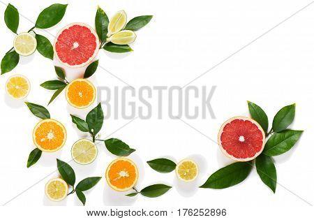 Border of citrus fruits (orange lemon lime grapefruit) with leaves isolated on white background.