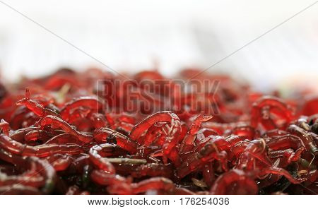 bunch of small red mosquito larvae bloodworm is lying on a white background