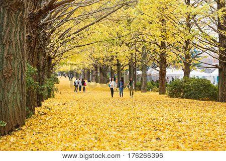 Showa Kenen Park