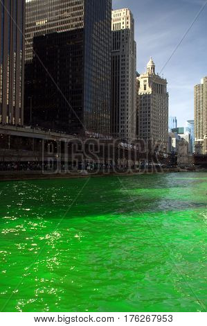 Chicago River Dyed Green Saint Patrick's Day with buildings along the shoreline