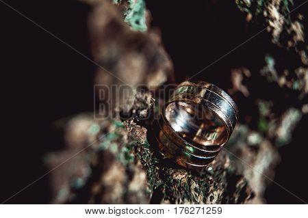 Luxury, wide two-tone wedding rings on wooden crust. macro