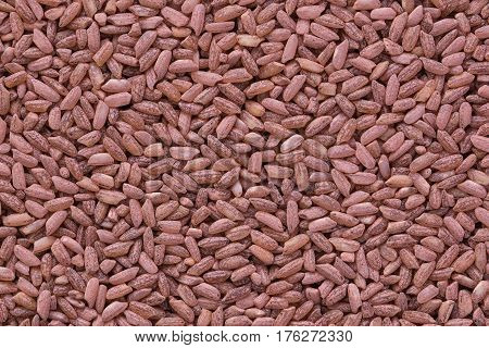 Grains of red rice heap closeup view from above