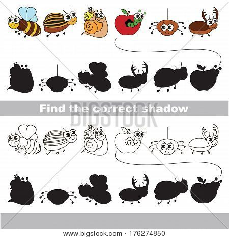 Set of funny small insects with shadows to find the correct one. Compare and connect objects and their true shadows. Easy educational kid gaming. Simple level of difficulty. Logic game for children.