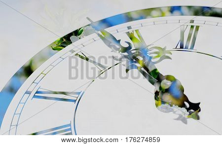 Detail of clock with spring blooming cherry on background