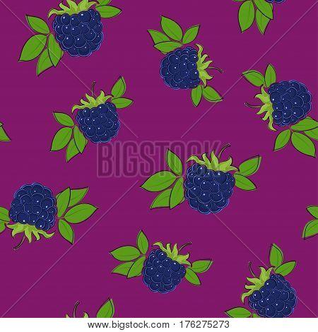 Seamless Pattern of Blackberry , Fruit Berry on Dark Lilac Background, Vector Illustration
