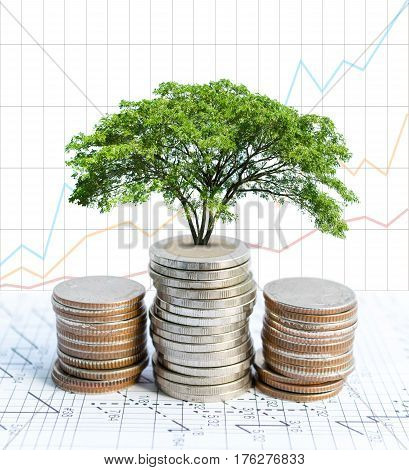 Double exposure coins and big green plant growing Graph background Saving money Economy Investment and Saving Concept.
