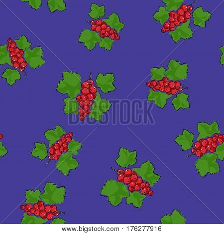 Seamless Pattern of Redcurrant , Fruit Berry on Purple Background, Vector Illustration