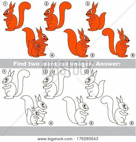 Squirrels to be colored, the coloring book to educate preschool kids with easy kid educational gaming and primary education of simple game level.