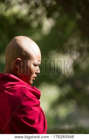 Jelichun, India - 27 July, 2012: Thoughtful earnest young buddhist nun from Jelichun nunnery in a sunny day profile portrait on a dark green nature background